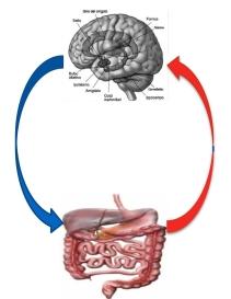 Malattia psicosomatica